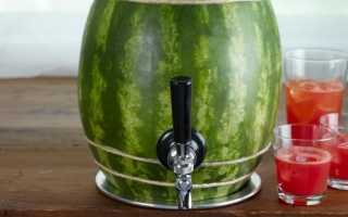 Как накачать арбуз водкой