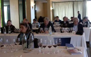 Техника дегустации и анализ вина: Начало длинного пути