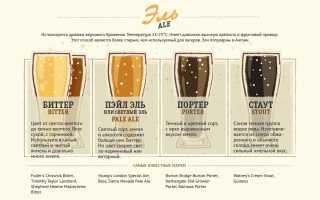 Виды и сорта пива
