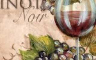Пино нуар: капризное вино с переменчивым вкусом