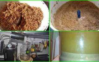 Рецепты и особенности приготовления самогона из солода