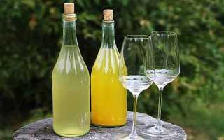 Рецепт приготовления вина из одуванчиков в домашних условиях