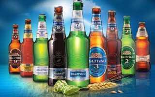 Пиво Балтика и его особенности