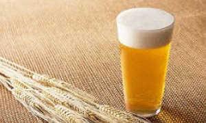 Пшеничное пиво от дистрибьютора «Народные Напитки»