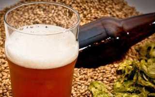 Рецепт приготовления венского пива (эля) в домашних условиях