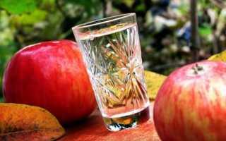 Рецепт приготовления самогона из яблочного сока