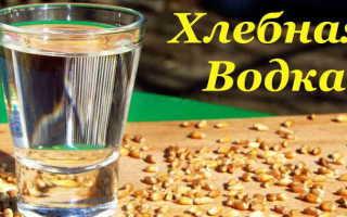 Как приготовить хлебную водку в домашних условиях