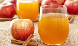 Рецепт приготовления вина из яблочного сока в домашних условиях