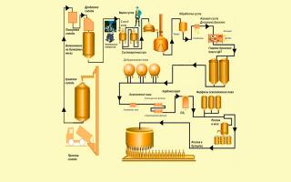 Безалкогольное пиво и антибиотики: совместимость и последствия для организма человека