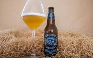 Бельгийское пиво Бланш Де Брюссель