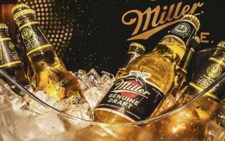 Миллер пиво: история, виды и интересные факты