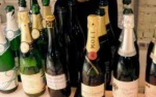 Подробная классификация шампанского (сорта и виды)