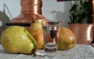 Рецепт приготовления браги из груши в домашних условиях