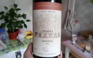 Вино красное сухое Абхазские вина Радеда